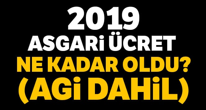 2019 Yılı Asgari Ücret Belirlendi